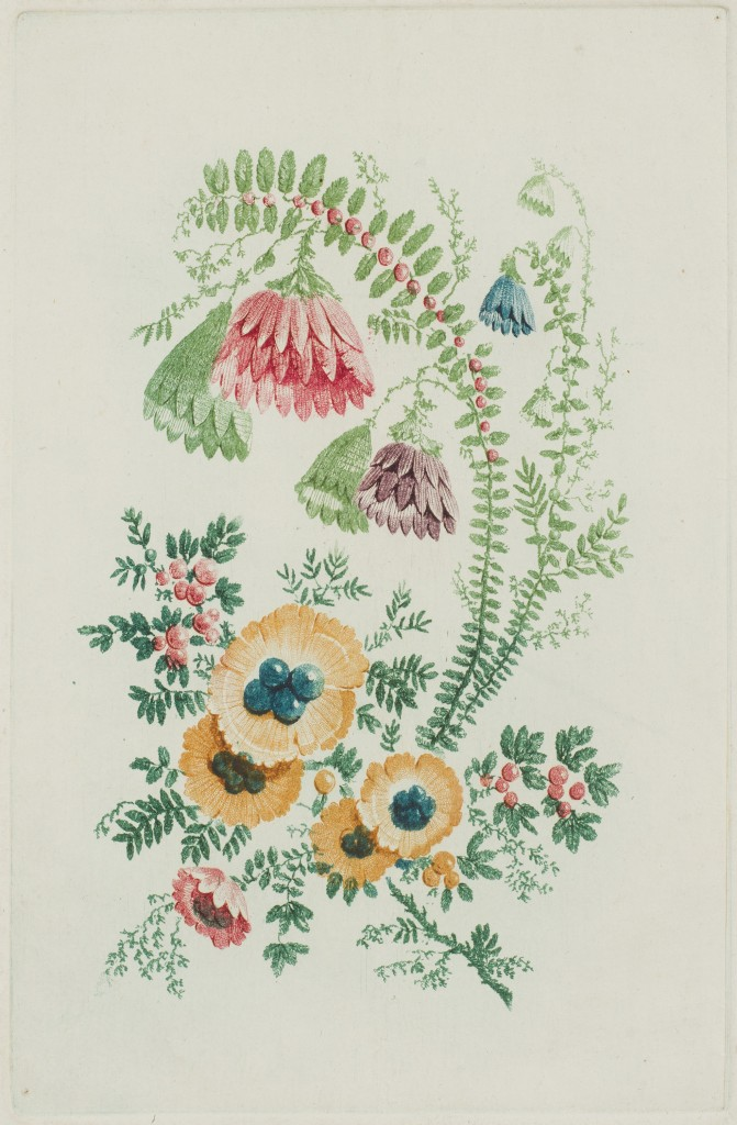 Anne Allen (British [English], active 1790s), Fantasy flower design. Color etching. John E. Andrus III (B.A. 1933) Fund and the Friends of the Davison Art Center funds, 2013.